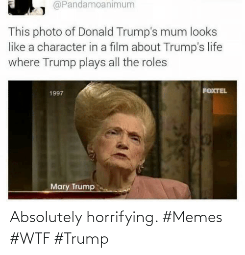 Trump: Absolutely horrifying. #Memes #WTF #Trump