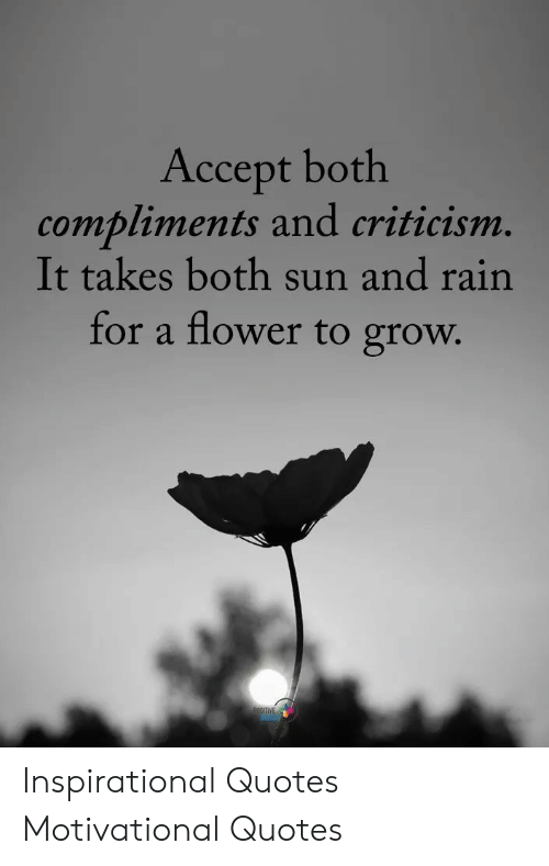 Accept Both Compliments And Criticism It Takes Both Sun And
