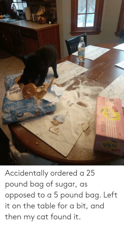 On The Table: Accidentally ordered a 25 pound bag of sugar, as opposed to a 5 pound bag. Left it on the table for a bit, and then my cat found it.