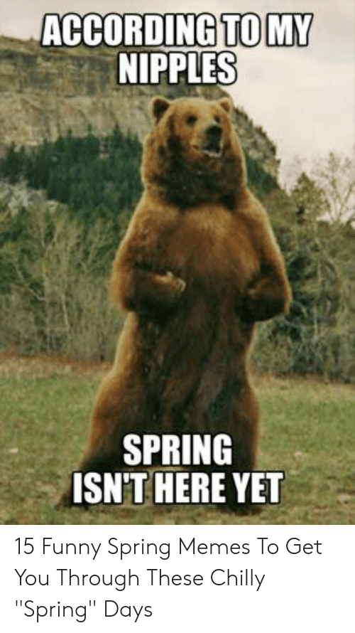 """Funny Spring Memes: ACCORDING TOM  NIPPLES  SPRING  ISN'T HERE YET 15 Funny Spring Memes To Get You Through These Chilly """"Spring"""" Days"""