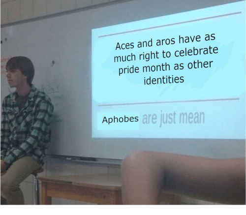 Identities: Aces and aros have as  much right to celebrate  pride month as other  identities  are just mean  Aphobes