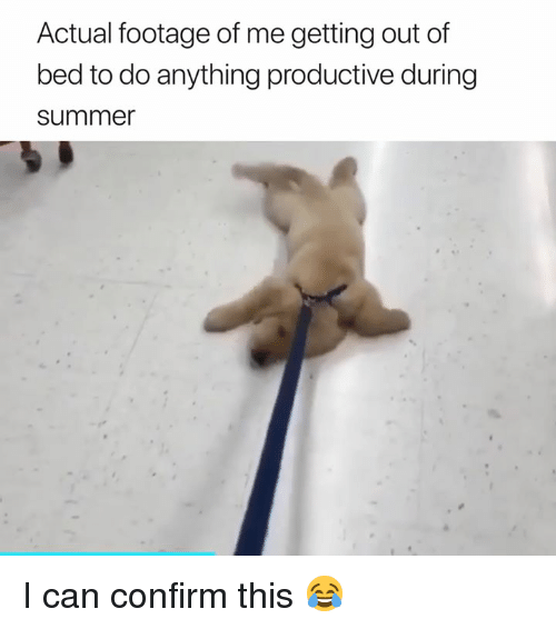 Can, This, and Bed: Actual footage of me getting out of  bed to do anything productive during  summe I can confirm this 😂