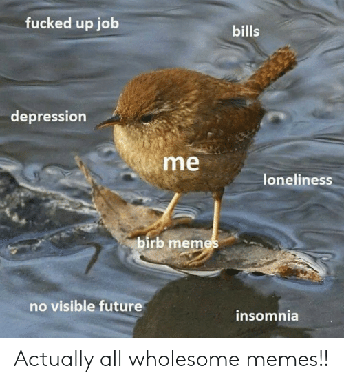 Actually: Actually all wholesome memes!!