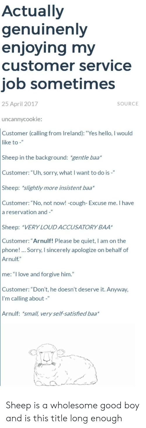 """baa: Actually  genuinenly  enjoying my  customer service  job sometimes  25 April 2017  SOURCE  uncannycookie:  Customer (calling from Ireland): """"Yes hello, I would  like to -""""  Sheep in the background: gentle baa*  Customer: """"Uh, sorry, what I want to do is-""""  Sheep: slightly more insistent baa*  Customer: """"No, not now! -cough- Excuse me. I have  a reservation and -""""  Sheep: VERY LOUDACCUSATORY BAA  Customer: """"Arnulf! Please be quiet, I am on the  phone!... Sorry, I sincerely apologize on behalf of  Arnulf""""  me: """"I love and forgive him.""""  Customer: """"Don't, he doesn't deserve it. Anyway,  I'm calling about -""""  Arnulf: small, very self-satisfied baa Sheep is a wholesome good boy and is this title long enough"""