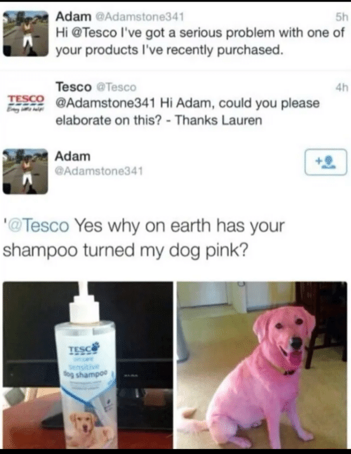 Pink: Adam @Adamstone341  Hi @Tesco l've got a serious problem with one of  5h  your products I've recently purchased.  Tesco @Tesco  4h  TESCO @Adamstone341 Hi Adam, could you please  elaborate on this? - Thanks Lauren  Adam  @Adamstone341  '@Tesco Yes why on earth has your  shampoo turned my dog pink?  TESC  Sensitive  dog shampoo