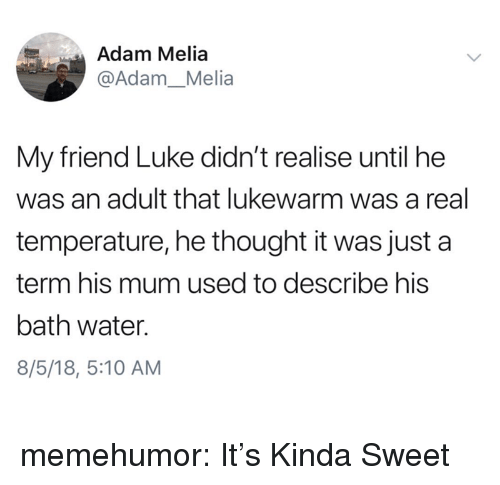 Tumblr, Blog, and Http: Adam Melia  @Adam_Melia  My friend Luke didn't realise until he  was an adult that lukewarm was a real  temperature, he thought it was just a  term his mum used to describe his  bath water.  8/5/18, 5:10 AM memehumor:  It's Kinda Sweet