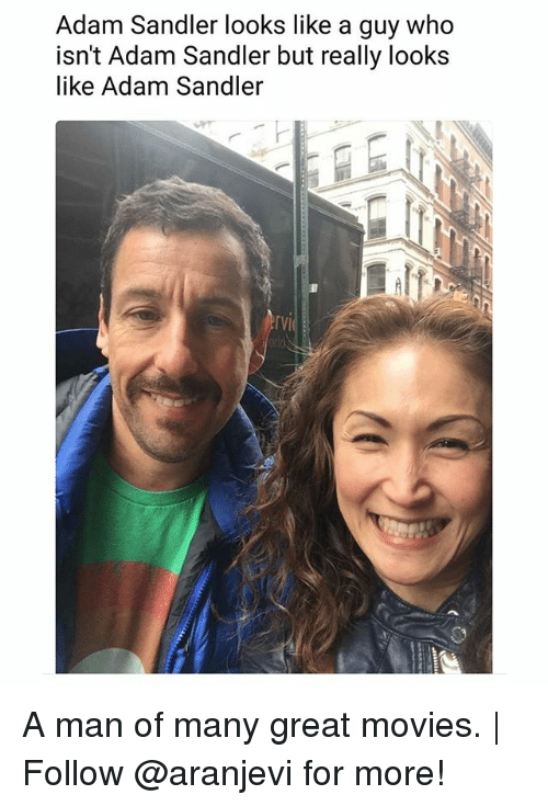 sandler: Adam Sandler looks like a guy who  isn't Adam Sandler but really looks  like Adam Sandler  『VI A man of many great movies. | Follow @aranjevi for more!