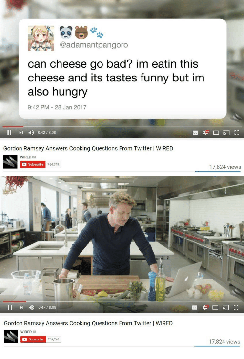 eatin: @adamantpangoro  can cheese go bad? im eatin this  cheese and its tastes funny but im  also hungry  9:42 PM 28 Jan 2017  II D 0:42/8:08  Gordon Ramsay Answers Cooking Questions From Twitter | WIRED  WIRED  Subscribe  17,824 views   II I 0:47/8:08  Gordon Ramsay Answers Cooking Questions From Twitter | WIRED  WIRED  Subscribe  764,749  17,824 views