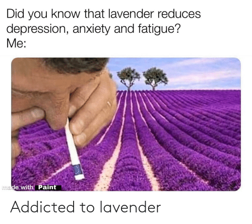 Lavender: Addicted to lavender