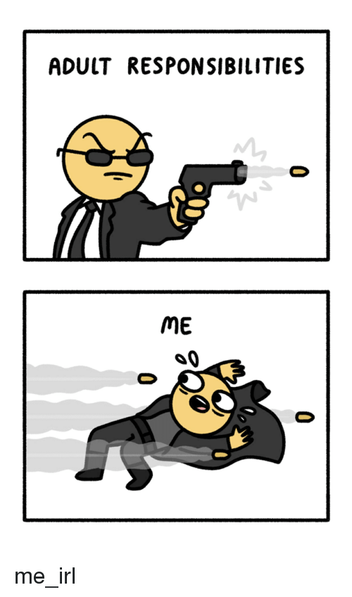 Irl, Me IRL, and Adult: ADULT RESPONSIBILITIES  ME me_irl