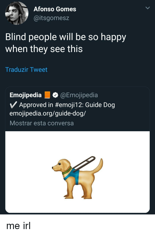Happy, Irl, and Me IRL: Afonso Gomes  @itsgomesz  Blind people will be so happy  when they see this  Traduzir Tweet  Emojipedia @Emojipedia  Approved in #emojil 2: Guide Dog  emojipedia.org/guide-dog/  Mostrar esta conversa me irl