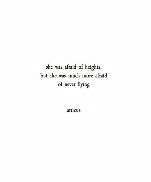 Never, She, and Atticus: afraid of heights,  she was  afraid  but she was much  more  flying  of  never  atticus