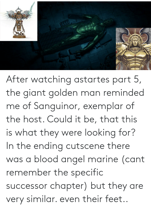 Successor: After watching astartes part 5, the giant golden man reminded me of Sanguinor, exemplar of the host. Could it be, that this is what they were looking for? In the ending cutscene there was a blood angel marine (cant remember the specific successor chapter) but they are very similar. even their feet..