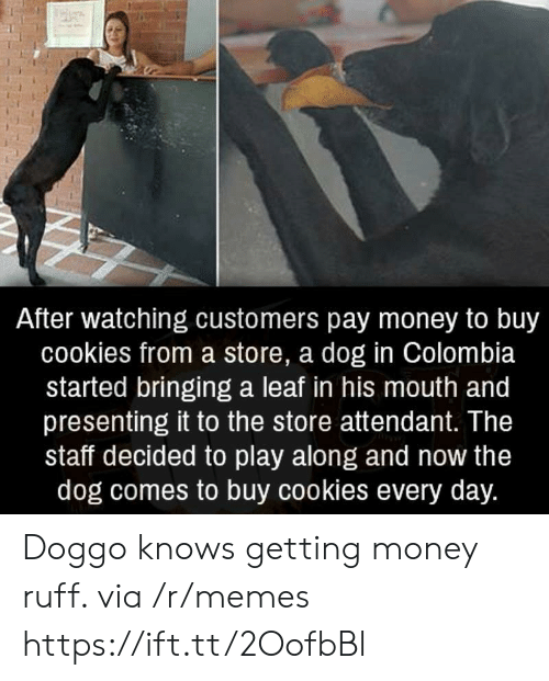 Getting Money: After watching customers pay money to buy  cookies from a store, a dog in Colombia  started bringing a leaf in his mouth and  presenting it to the store attendant. The  staff decided to play along and now the  dog comes to buy cookies every day. Doggo knows getting money ruff. via /r/memes https://ift.tt/2OofbBl