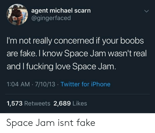 Fake, Fucking, and Iphone: agent michael scarn  @gingerfaced  I'm not really concerned if your boobs  are fake. I know Space Jam wasn't real  and I fucking love Space Jam  1:04 AM.7/10/13 Twitter for iPhone  1,573 Retweets 2,689 Likes Space Jam isnt fake