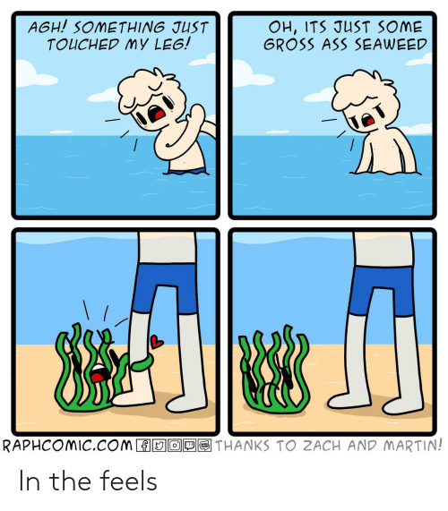 zach and: AGH! SOMETHING JUST  TOUCHED MY LEG!  OH, ITS JUST SOME  GROSS ASS SEAWEED  RAPHCOMIC.COM  THANKS TO ZACH AND MARTIN!  O  TOON In the feels
