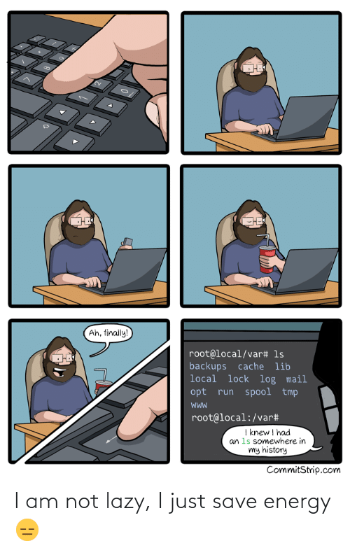 In My: Ah, finally!  root@local/var# 1s  backups cache lib  local lock log mail  opt run spool tmp  root@local:/var#  I knew I had  an 1s somewhere in  my history  CommitStrip.com I am not lazy, I just save energy 😑