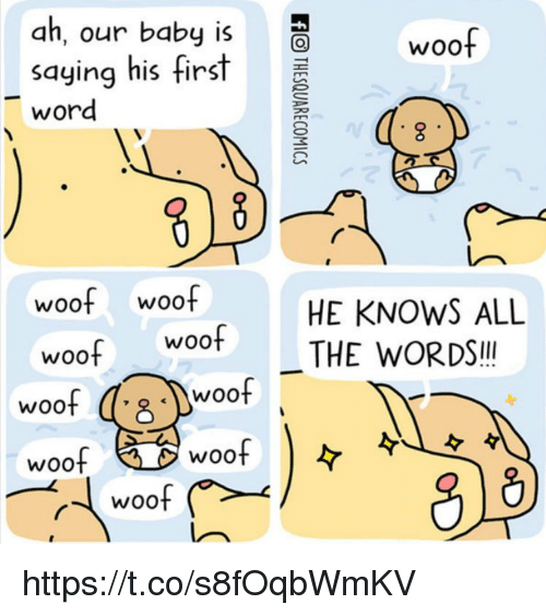 Memes, Woot, and Word: ah, our baby is  saying his first  word  woof  woof woof  woof woof  HE KNOWS ALL  THE WORDS!!  woof  Woo  woof  WOOt  woof  woo https://t.co/s8fOqbWmKV