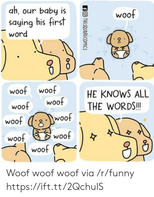 Funny, Word, and All The: ah, our baby is  saying his first  word  woof  woof woof  woof Woo  HE KNOWS ALL  THE WORDS.!  woo  woo  woof  woo  woof Woof woof woof via /r/funny https://ift.tt/2QchuIS