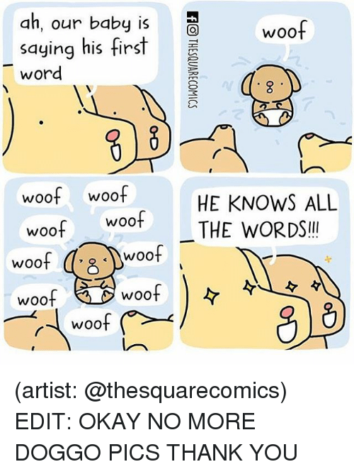 Memes, Thank You, and Okay: ah, our baby is  woof  saying his first  word  woof woof  HE KNOWS ALL  Woot THE WORDS  woof  woof  woof  woof  WOO  WOO (artist: @thesquarecomics) EDIT: OKAY NO MORE DOGGO PICS THANK YOU