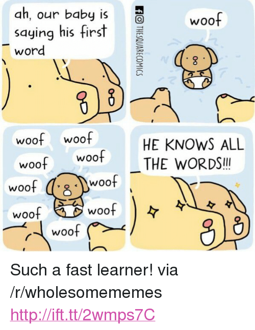 "Http, Woot, and Word: ah, our baby woof  saying hisfirst  word  woof woof  HE KNOWS ALL  THE WORDS!l  woo  woo  woof  WOOt  woof  woof <p>Such a fast learner! via /r/wholesomememes <a href=""http://ift.tt/2wmps7C"">http://ift.tt/2wmps7C</a></p>"