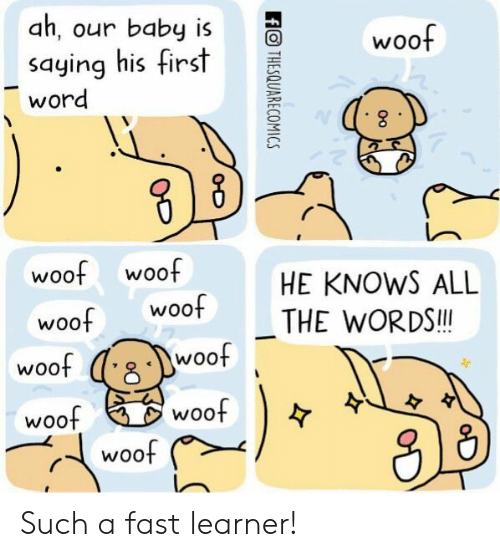 Woot, Word, and All The: ah, our baby woof  saying hisfirst  word  woof woof  HE KNOWS ALL  THE WORDS!l  woo  woo  woof  WOOt  woof  woof Such a fast learner!