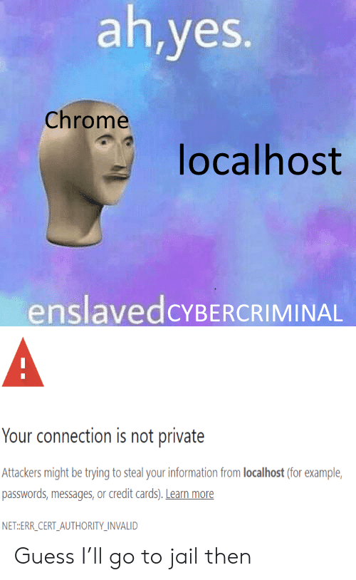Connection: ah,yes.  Chrome  localhost  enslavedcYBERCRIMINAL  A  Your connection is not private  Attackers might be trying to steal your information from localhost (for example  passwords,messages, or credit cards). Learn more  NET:ERR_CERT_AUTHORITY_INVALID Guess I'll go to jail then