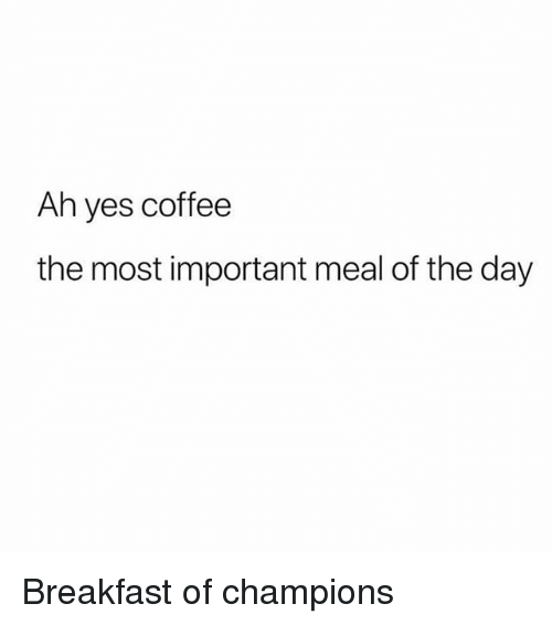 Breakfast, Coffee, and Girl Memes: Ah yes coffee  the most important meal of the day Breakfast of champions