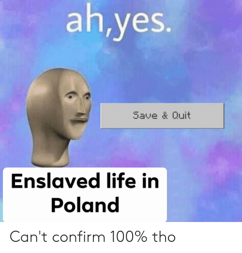Ahyes Save & Quit Enslaved Life in Poland Can't Confirm 100