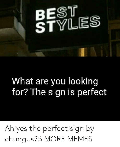 sign: Ah yes the perfect sign by chungus23 MORE MEMES