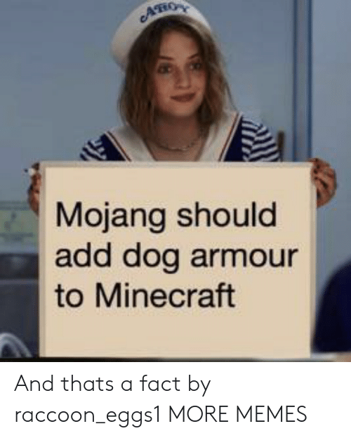 Mojang: AHO  Mojang should  add dog armour  to Minecraft And thats a fact by raccoon_eggs1 MORE MEMES