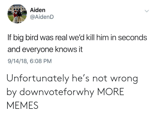 Big Bird: Aiden  AidenD  If big bird was real we'd kill him in seconds  and everyone knows it  9/14/18, 6:08 PM Unfortunately he's not wrong by downvoteforwhy MORE MEMES