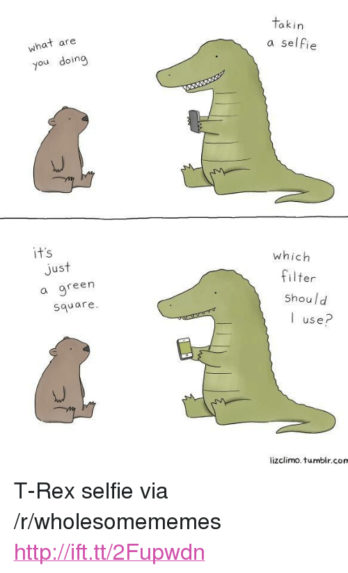 """Selfie, Tumblr, and Http: akin  what are  you doing  a selfie  it's  which  Jus  a gree  square  filter  shoul d  I use?  lizclimo. tumblr.com <p>T-Rex selfie via /r/wholesomememes <a href=""""http://ift.tt/2Fupwdn"""">http://ift.tt/2Fupwdn</a></p>"""