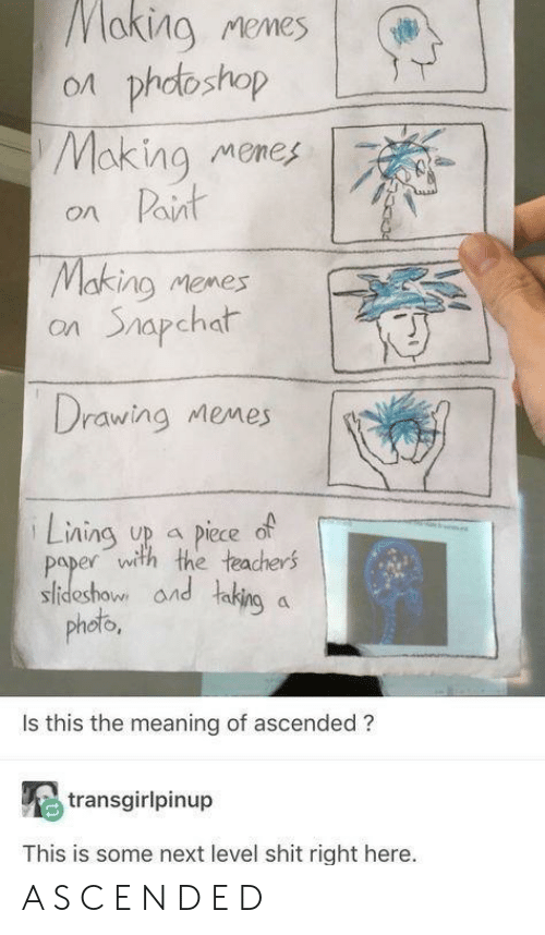 Memes, Shit, and Meaning: aking Memes | (#  on phdoshop  Making memes  on Paint  Making memes  on Shapchat  Drawing Memes  Lning up piece of  paper with the teachers  sideshow and taking a  phob  oto  Is this the meaning of ascended ?  transgirlpinup  This is some next level shit right here. A S C E N D E D