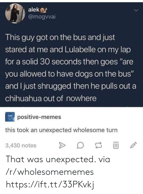 "Chihuahua, Dogs, and Memes: alek  @mogvvai  This guy got on the bus and just  stared at me and Lulabelle on my lap  for a solid 30 seconds then goes ""are  you allowed to have dogs on the bus""  and I just shrugged then he pulls out a  chihuahua out of nowhere  npositive-memes  this took an unexpected wholesome turn  3,430 notes That was unexpected. via /r/wholesomememes https://ift.tt/33PKvkj"
