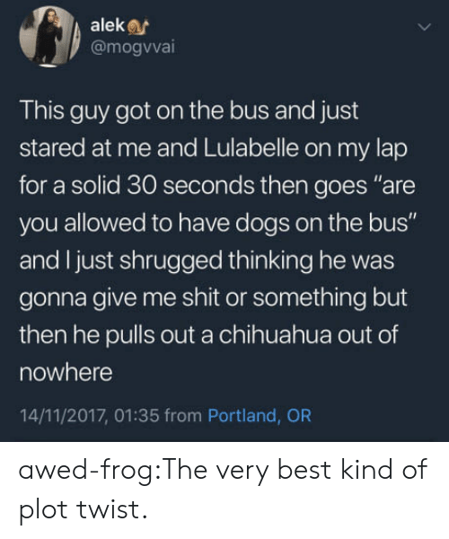 """chihuahua: aleke  @mogvva  This guy got on the bus and just  stared at me and Lulabelle on my lap  for a solid 30 seconds then goes """"are  you allowed to have dogs on the bus""""  and I just shrugged thinking he was  gonna give me shit or something but  then he pulls out a chihuahua out of  nowhere  14/11/2017, 01:35 from Portland, OR awed-frog:The very best kind of plot twist."""