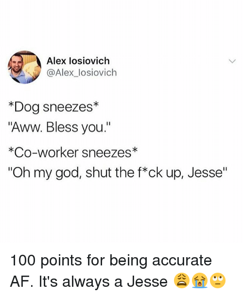 """Af, Anaconda, and Aww: Alex losiovich  @Alex_losiovich  *Dog sneezes*  """"Aww. Bless you.""""  *Co-worker sneezes*  """"Oh my god, shut the f*ck up, Jesse"""" 100 points for being accurate AF. It's always a Jesse 😩😭🙄"""