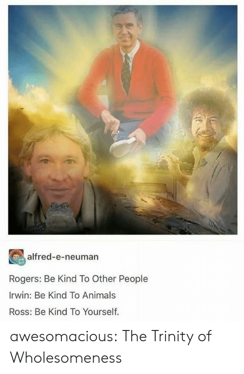 Animals, Tumblr, and Blog: alfred-e-neuman  Rogers: Be Kind To Other People  Irwin: Be Kind To Animals  Ross: Be Kind To Yourself. awesomacious:  The Trinity of Wholesomeness