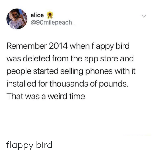 Flappy: alice  @90milepeach_  Remember 2014 when flappy bird  was deleted from the app store and  people started selling phones with it  installed for thousands of pounds.  That was a weird time flappy bird
