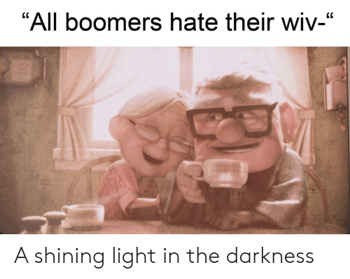 """the darkness: """"All boomers hate their wiv-"""" A shining light in the darkness"""