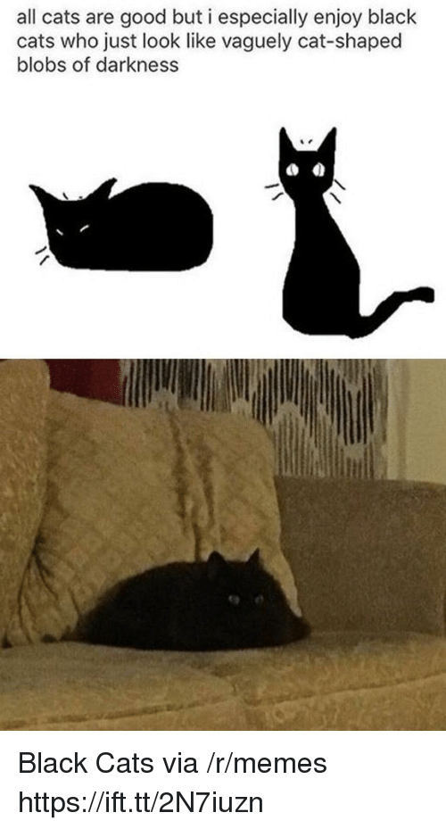 Cats, Memes, and Black: all cats are good but i especially enjoy black  cats who just look like vaguely cat-shaped  blobs of darkness  9 e Black Cats via /r/memes https://ift.tt/2N7iuzn