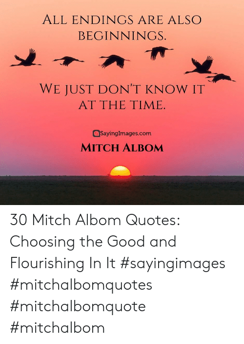 Sayingimages Com: ALL ENDINGS ARE ALSO  BEGINNINGS.  WE JUST DON'T KNOW IT  AT THE TIME  SayingImages.com  MITCH ALBOM 30 Mitch Albom Quotes: Choosing the Good and Flourishing In It #sayingimages #mitchalbomquotes #mitchalbomquote #mitchalbom