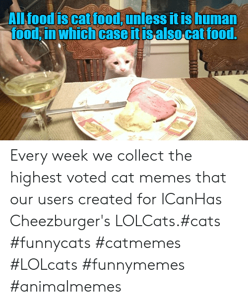 Cat Memes: ALl food is cat food, unless it is human  food in which case it isalso cat food.  TE Every week we collect the highest voted cat memes that our users created for ICanHas Cheezburger's LOLCats.#cats #funnycats #catmemes #LOLcats #funnymemes #animalmemes
