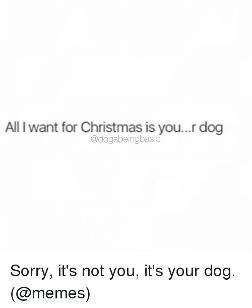 Dog Meme: All l want for Christmas is you...r dog  @dogsbeingbasic Sorry, it's not you, it's your dog. (@memes)