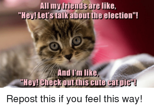 "Cute, Friends, and Memes: All my friends are like,  ""Hey! Let's talk about the election""!  And Im like  THey! CheckRout this cute cat pic""! Repost this if you feel this way!"