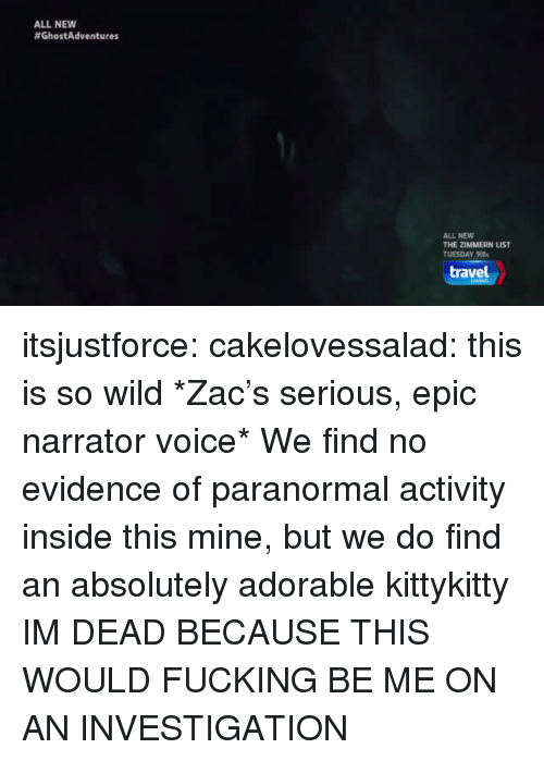Fucking, Tumblr, and Blog: ALL NEW  #GhostAdventures  ALL NEW  THE ZİMMERN LIST  TUESDAY 918  travel itsjustforce: cakelovessalad:  this is so wild  *Zac's serious, epic narrator voice* We find no evidence of paranormal activity inside this mine, but we do find an absolutely adorable kittykitty  IM DEAD BECAUSE THIS WOULD FUCKING BE ME ON AN INVESTIGATION