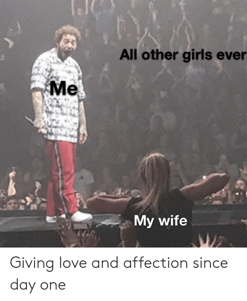 other girls: All other girls ever  Me  My wife  WZ Giving love and affection since day one