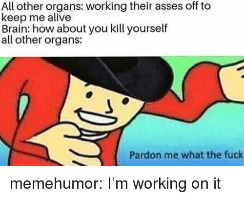 Alive, Tumblr, and Blog: All other organs: working their asses off to  keep me alive  Brain: how about you kill yourself  all other organs:  Pardon me what the fuck memehumor:  I'm working on it
