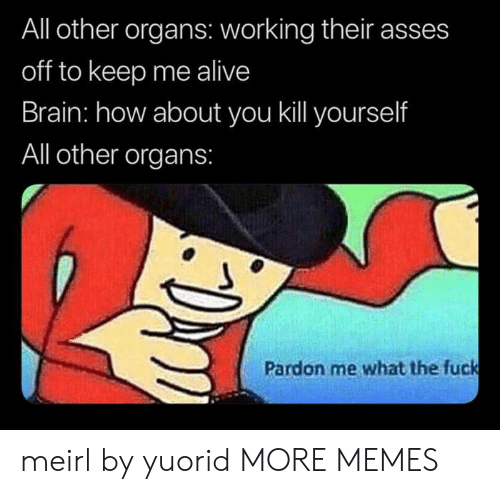 pardon: All other organs: working their asses  off to keep me alive  Brain: how about you kill yourself  All other organs:  Pardon me what the fuck meirl by yuorid MORE MEMES