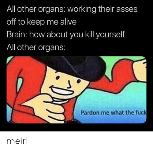 pardon: All other organs: working their asses  off to keep me alive  Brain: how about you kill yourself  All other organs:  Pardon me what the fuck meirl